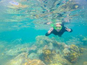 snorkling di pulau semak daun